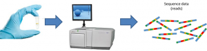 genome_sequencing_chain